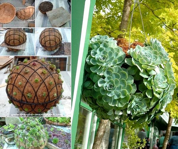 hanging-planter-ideas-woohome-3