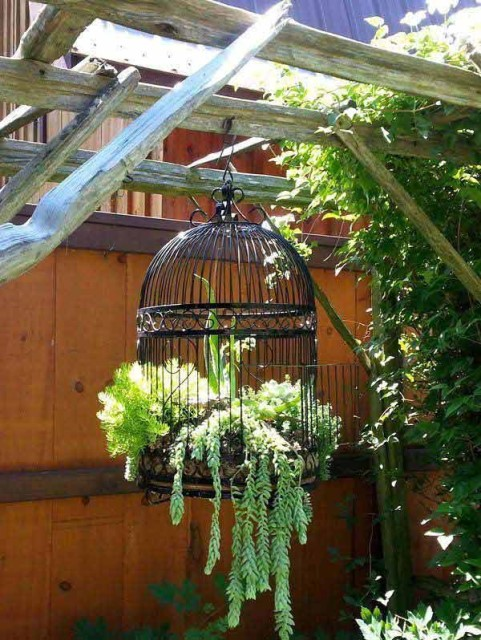 hanging-planter-ideas-woohome-9