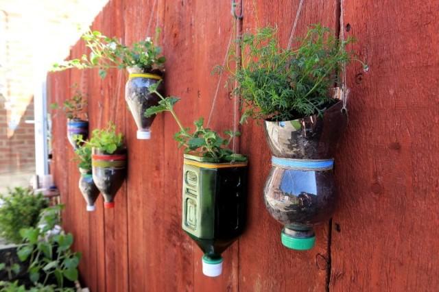 plastic-bottles-planter