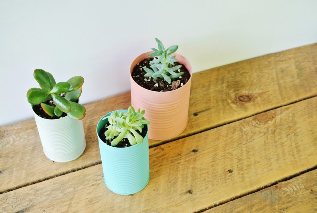 colorful-tin-can-planter-diy