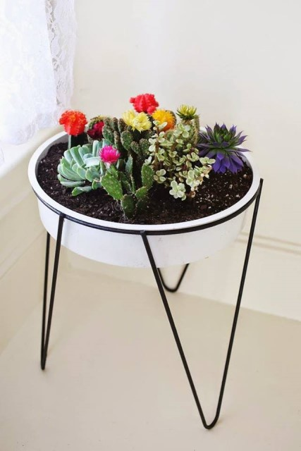 creative-planter-ideas-3