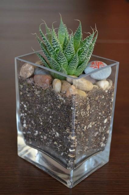 creative-planter-ideas-4