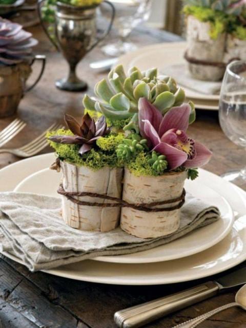 creative-planter-ideas-5