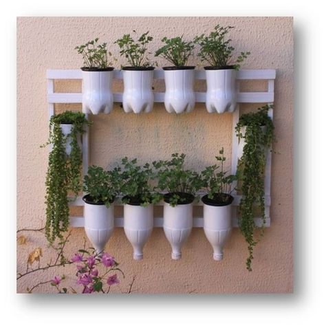 diy-and-creative-plastic-bottles-as-a-planter-ideas-5