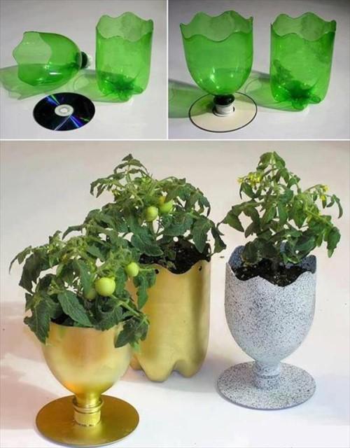 diy-plastic-bottle-planter