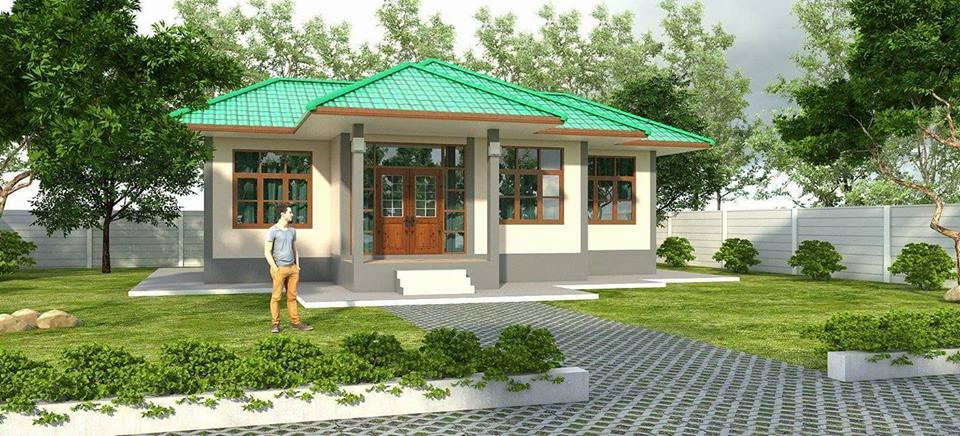 wide-facade-contemporary-green-roof-house-1