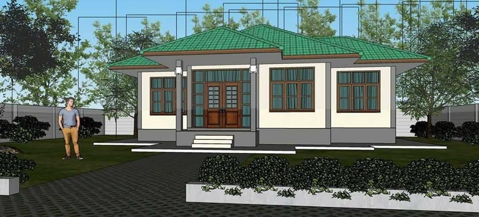 wide-facade-contemporary-green-roof-house-2