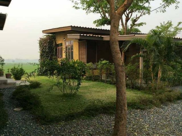1 storey raw concrete retreat house (16)