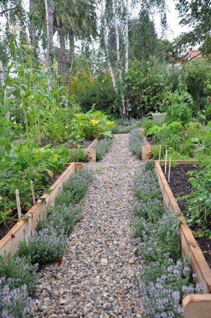 ไอเดีย 44 แปลงผักแปลงสมุนไพร สร้างจากงานไม้และของเหลือ