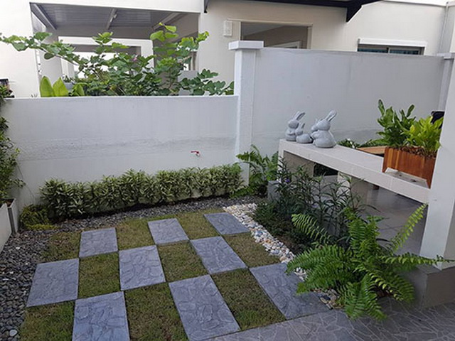 carp-fish-pond-and-small-garden-review (1)