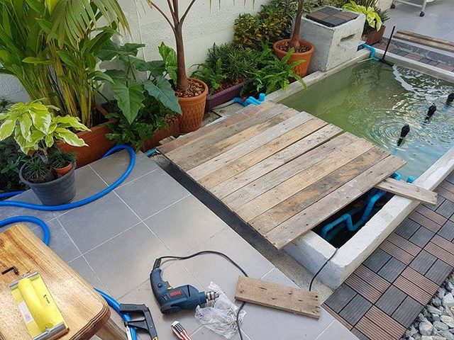 carp-fish-pond-and-small-garden-review (24)