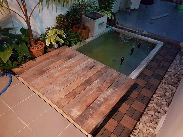 carp-fish-pond-and-small-garden-review (25)