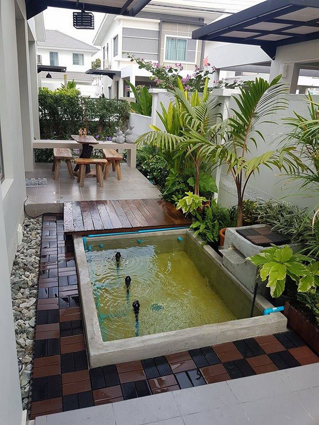 carp-fish-pond-and-small-garden-review (26)