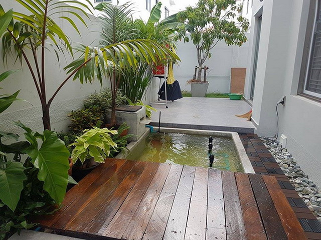carp-fish-pond-and-small-garden-review (28)