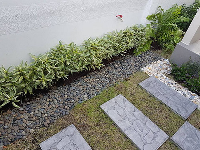 carp-fish-pond-and-small-garden-review (4)