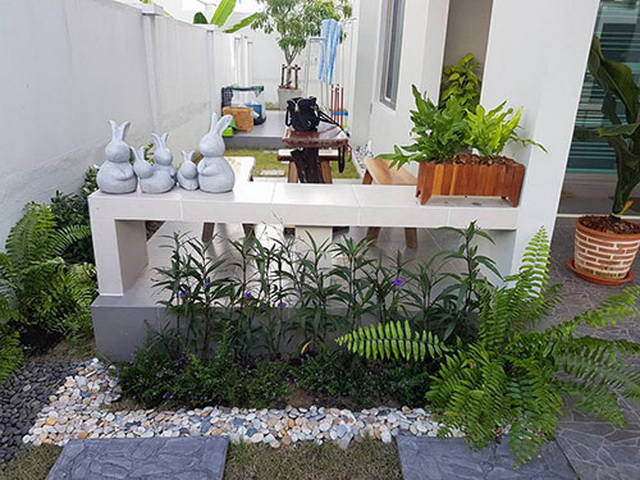 carp-fish-pond-and-small-garden-review (5)