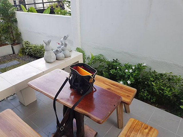 carp-fish-pond-and-small-garden-review (6)