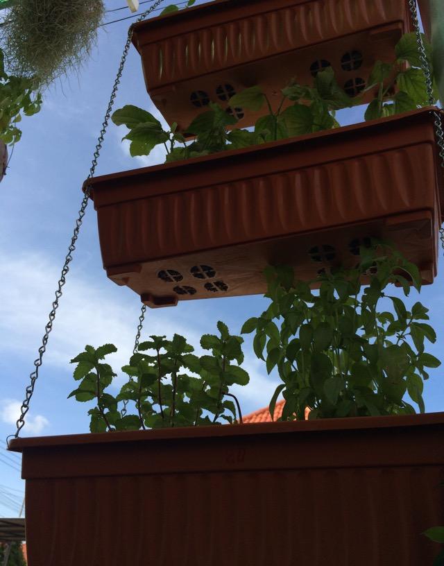 diy single house decoration review (17)