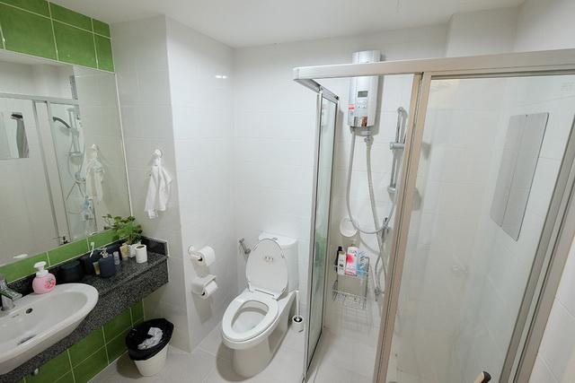 monotone bathroom condo renovation (3)
