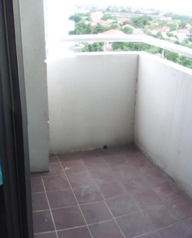 narrow condo patio garden review (1)