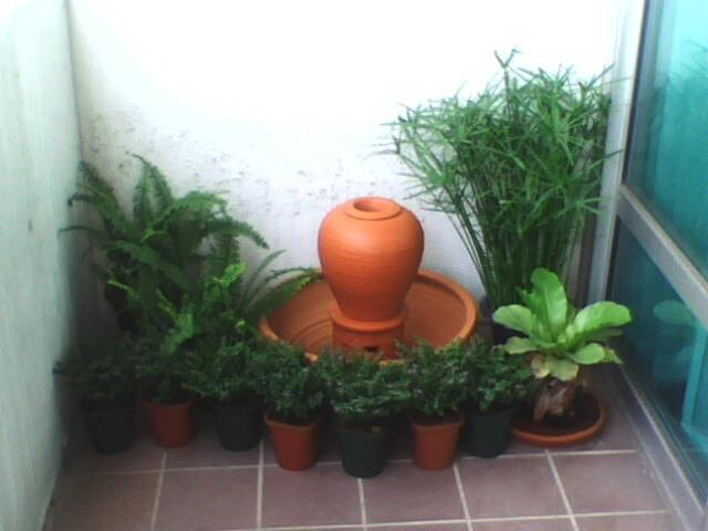 narrow condo patio garden review (2)