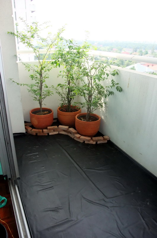 narrow condo patio garden review (4)