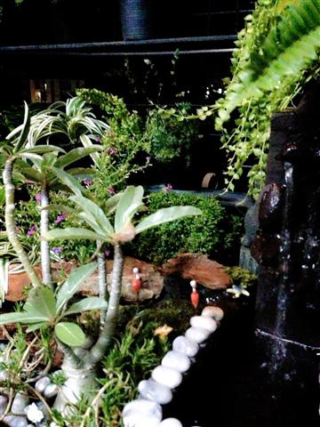 small waterfall garden condo patio (11)