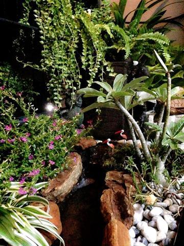 small waterfall garden condo patio (13)