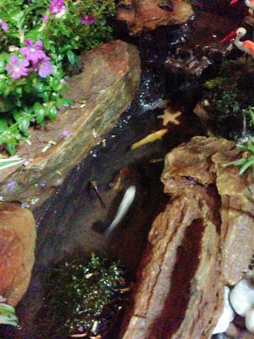 small waterfall garden condo patio (14)