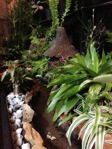 small waterfall garden condo patio (15)