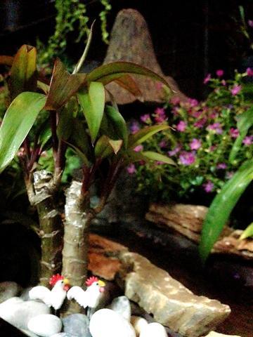 small waterfall garden condo patio (16)