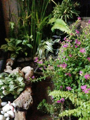 small waterfall garden condo patio (20)