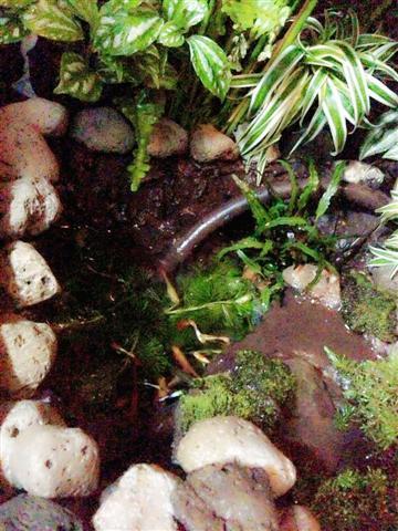 small waterfall garden condo patio (24)