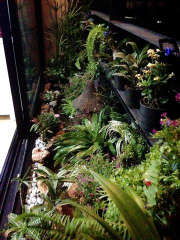 small waterfall garden condo patio (7)