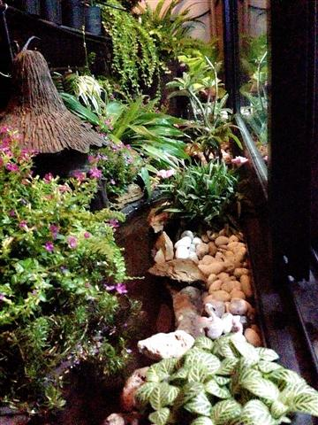 small waterfall garden condo patio (8)
