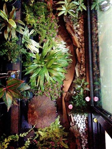 small waterfall garden condo patio (9)
