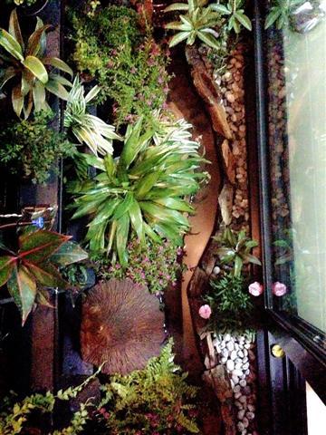 small waterfall garden condo patio (9)