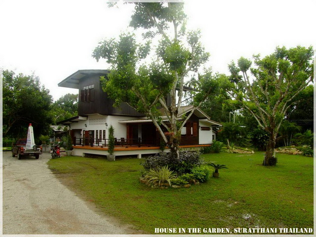 thai country half wood half concrete house review (1)