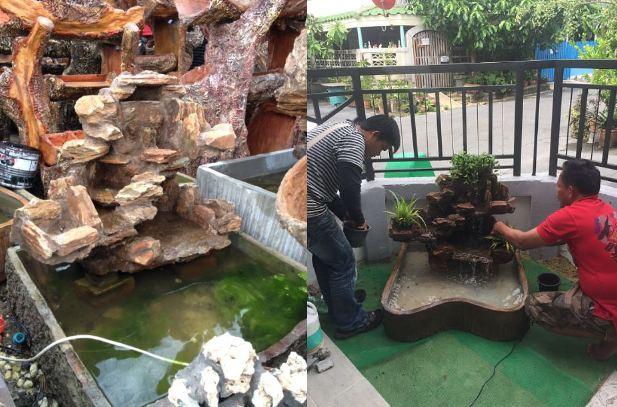 DIY side yard garden idea review (13)