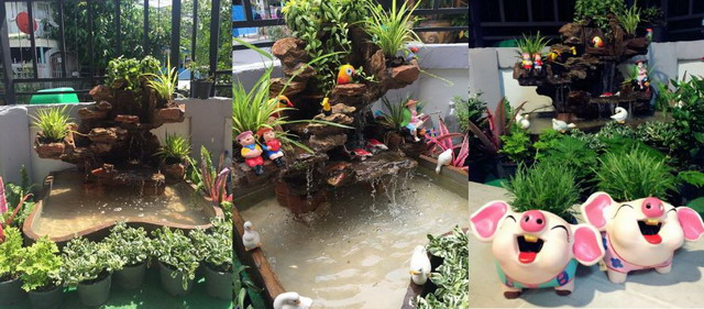 DIY side yard garden idea review (14)