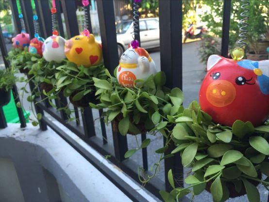 DIY side yard garden idea review (15)