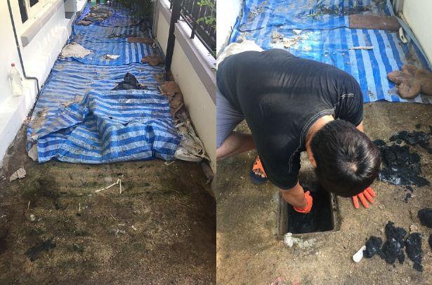 DIY side yard garden idea review (7)