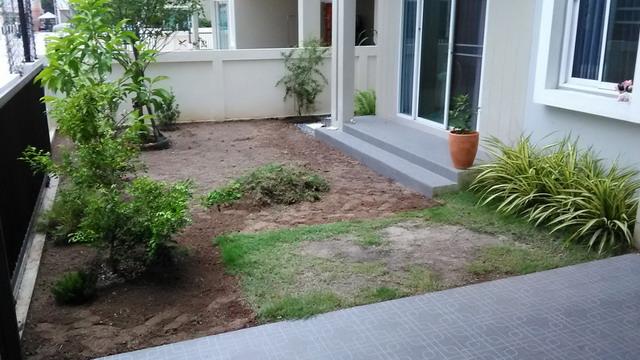 frontyard garden renovation review (3)
