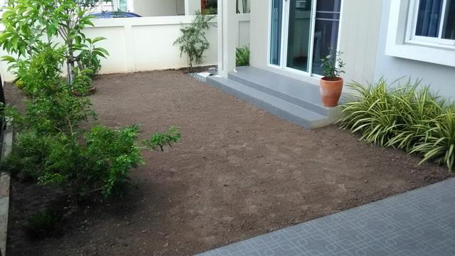 frontyard garden renovation review (4)