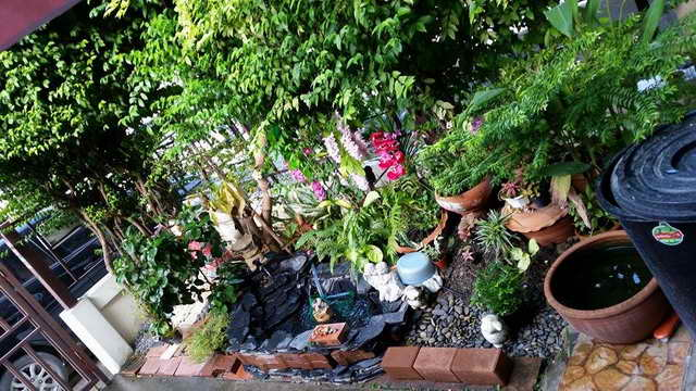 small-waterfall-garden-diy-by-woman (12)