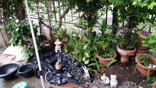 small-waterfall-garden-diy-by-woman (4)