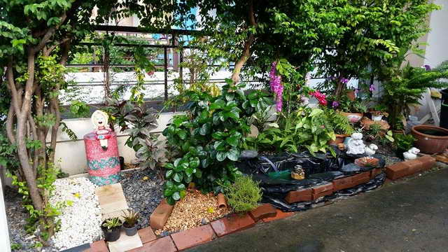 small-waterfall-garden-diy-by-woman (8)