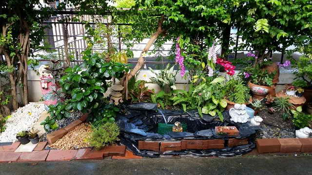 small-waterfall-garden-diy-by-woman (9)