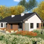 บ้านเดี่ยวขนาดเล็ก กำลังดี ออกแบบเรียบง่าย รับกับบ้านสวน อัดแน่นไว้ 3 ห้องนอน 2 ห้องน้ำ