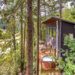 บ้านสองชั้นกลางป่า ดีไซน์สไตล์เคบิน ขนาดกะทัดรัด พื้นที่น้อยๆก็สวยได้ พร้อมการตกแต่งแบบมินิมอล